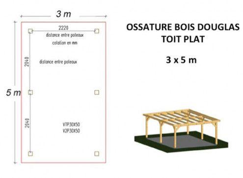 OSSATURE BOIS DOUGLAS MONO-PENTE 15m2