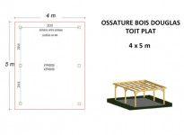 OSSATURE DOUGLAS TOIT PLAT 20m2