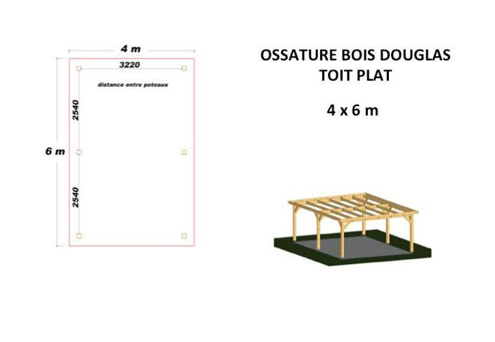 OSSATURE DOUGLAS TOIT PLAT 24m2