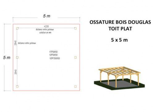 OSSATURE DOUGLAS TOIT PLAT 25m2