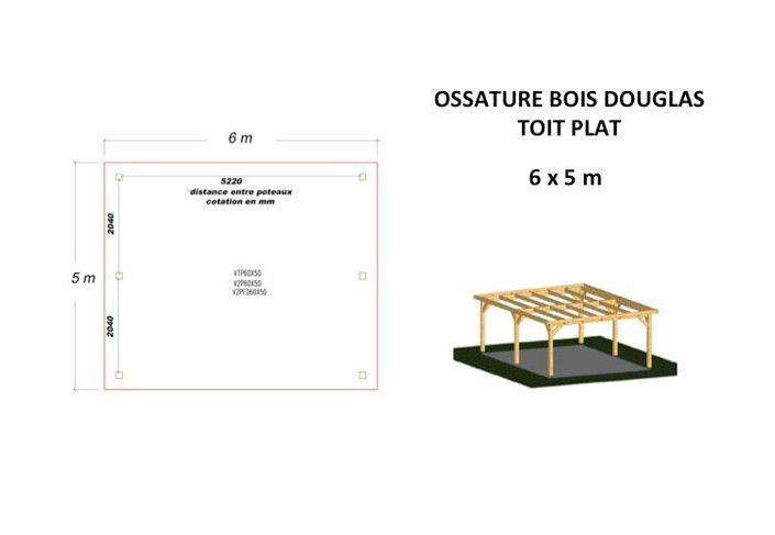 OSSATURE DOUGLAS TOIT PLAT 30m2