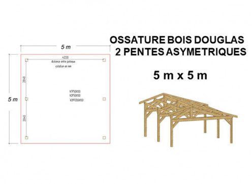 OSSATURE DOUGLAS DEUX PENTES ASYMÉTRIQUES 25m2