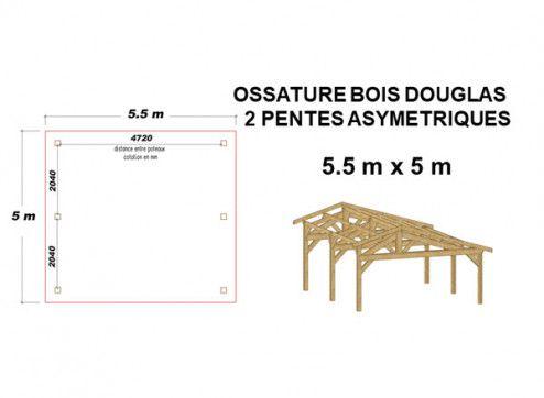 OSSATURE DOUGLAS DEUX PENTES ASYMÉTRIQUES 27.5m2