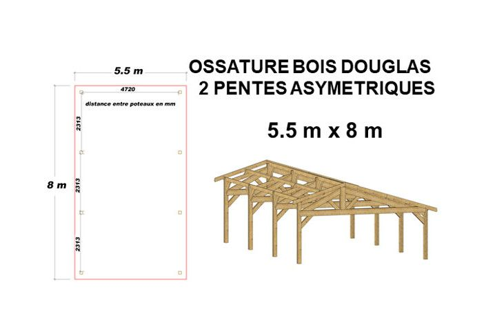 OSSATURE DOUGLAS DOUBLE PENTES ASYMÉTRIQUES 44m2