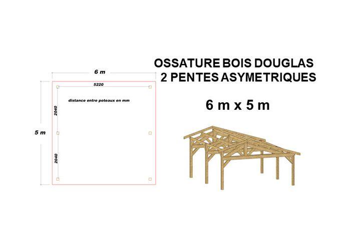 OSSATURE DOUGLAS DEUX PENTES SYMÉTRIQUES 30m2