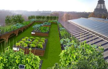 Une terrasse végétale en plein coeur de Paris