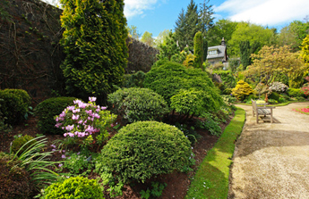 Un jardin sans entretien bien choisir les esp ces blog for Plante jardin sans entretien