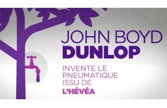 Dunlopillo, chronique d'un succès