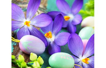 En attendant le printemps, retroussez vos manches !