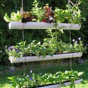 jardin suspendu avec des gouttières