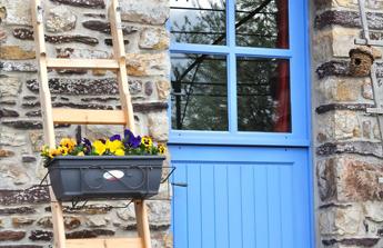 porte bleue et jardinières sur une échelle