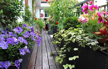 Faites de votre balcon un jardin d'appartement !