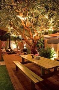 Arbre illuminé par luminions sur une terrasse
