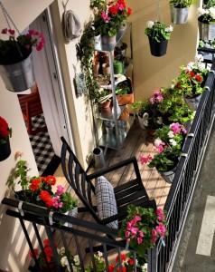 balcon coloré fleuris espace détente