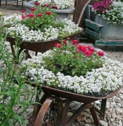Recup au jardin : une brouette pour mettre en avant ses jardinières de fleurs