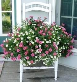 jardinière sur une chaise