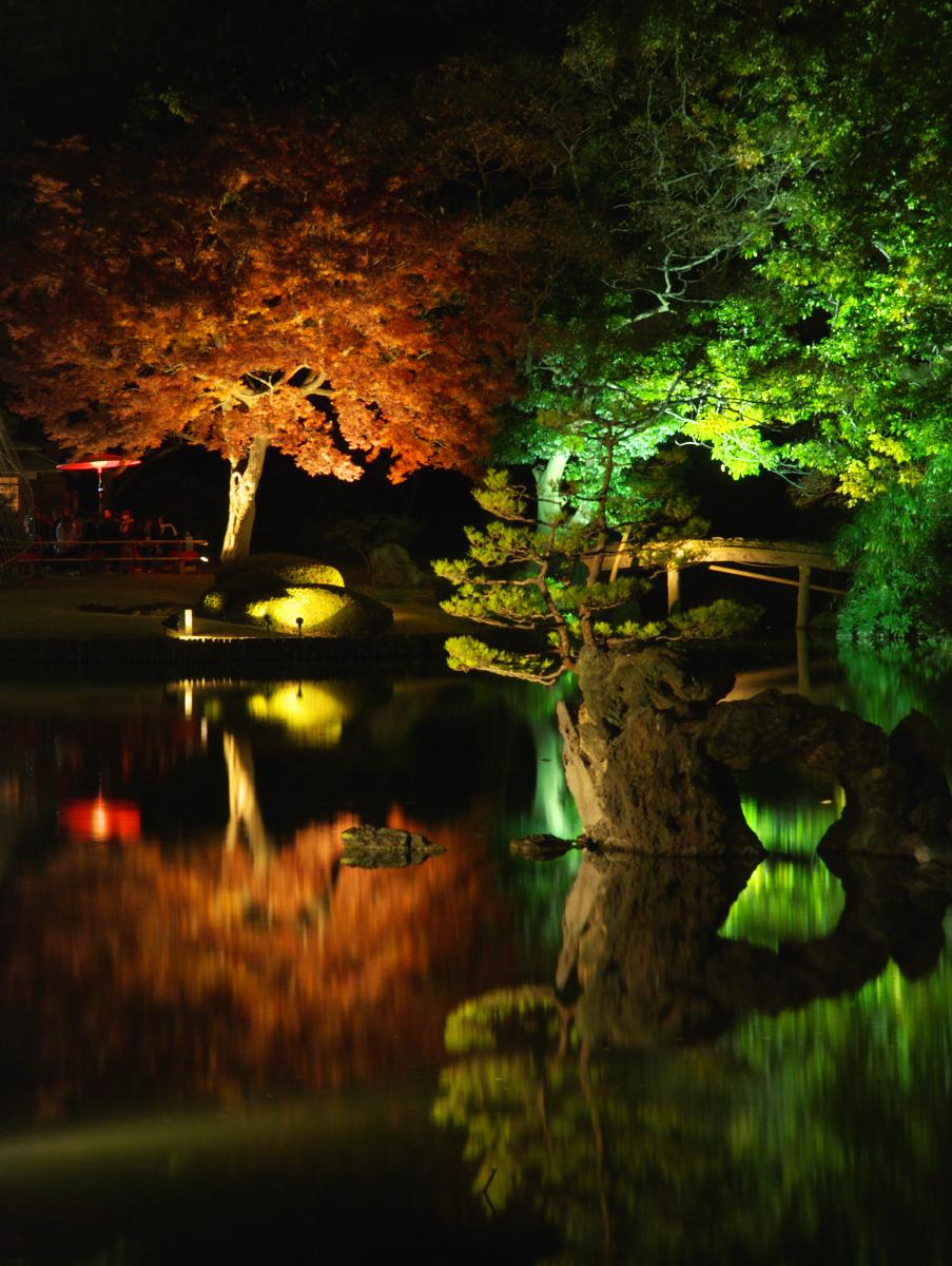 Des arbres illuminés se reflètent dans l'eau au jardin Rikugien