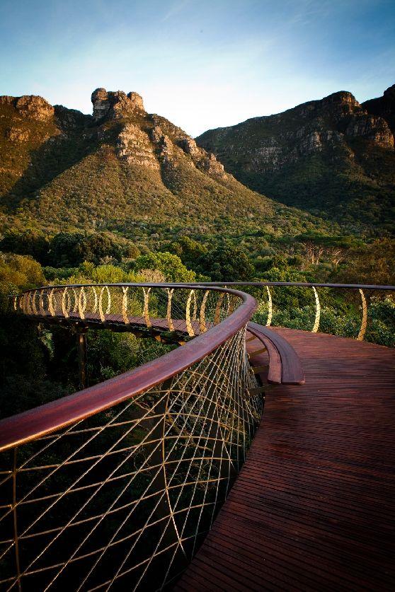 Pont traversant la forêt africaine