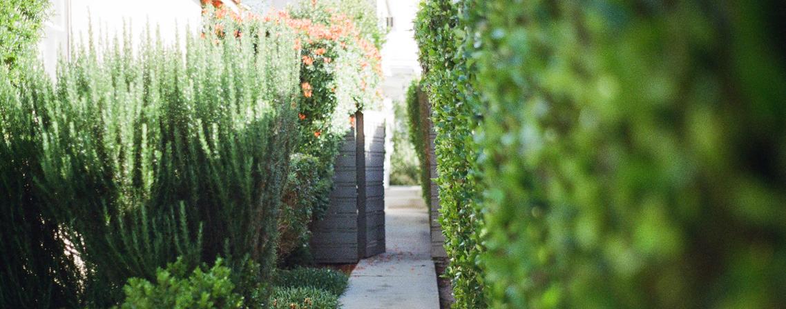 Salons et foires les rendez vous de septembre 2015 for Jardin septembre 2015