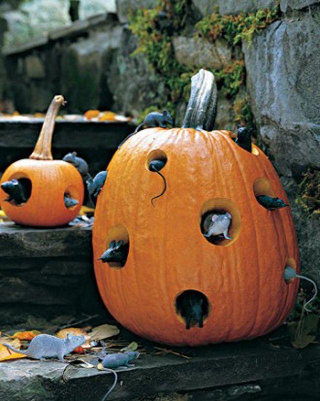 Souris dans citrouilles Halloween