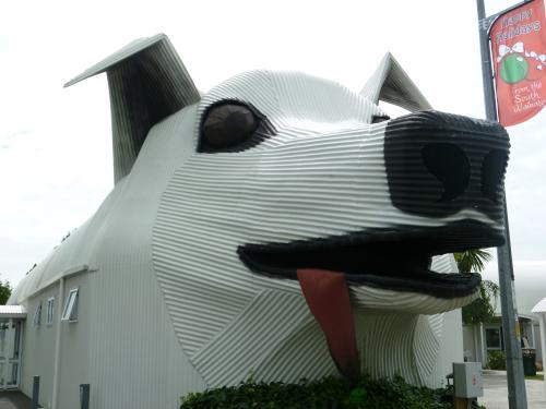 House Dog à Tirau en Nouvelle Zélande