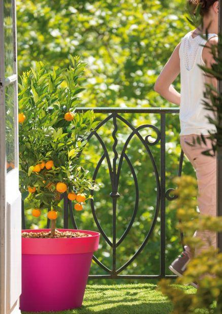 conseils de jardinage pour cultiver des aromates au balcon blog ma maison mon jardin. Black Bedroom Furniture Sets. Home Design Ideas