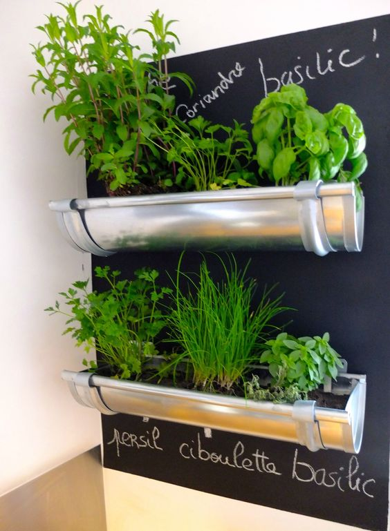Conseils de jardinage pour cultiver des aromates au balcon - Plante pour cuisine ...