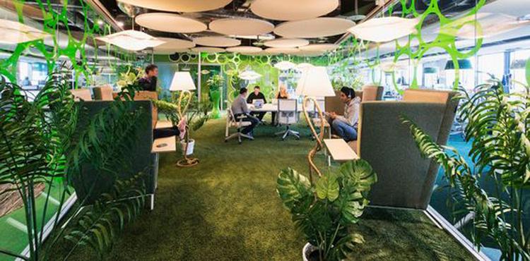 l'intérieur naturel de l'entreprise Google à Dublin