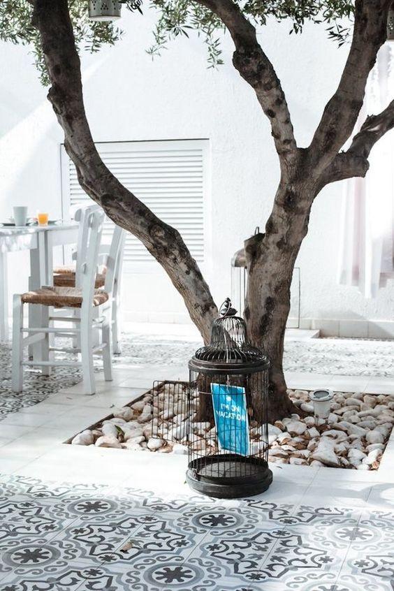 un arbre domine ce patio totalement blanc