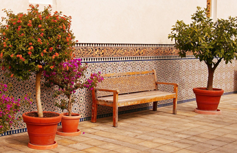 un banc au milieu d'arbres fleuris sur la terrasse