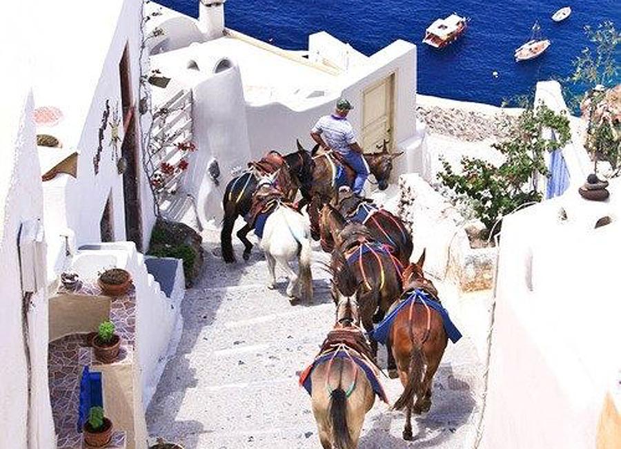 quelques ânes sillonnent les ruelles grecques
