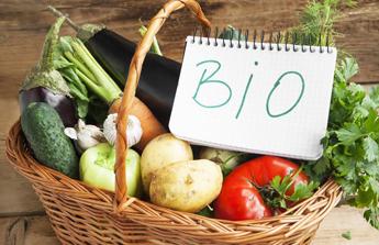 Vive les produits bio au jardin ! ♻️