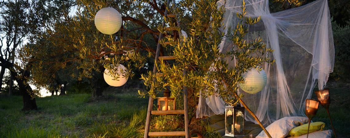 Comment Se Premunir Des Moustiques Et Autres Insectes Pour