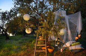 Comment se prémunir des moustiques et autres insectes pour les soirées d'été ? ??