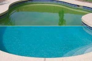 de l'eau verte devient claire après un traitement de choc