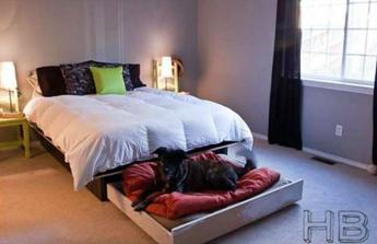 une niche pour le chien sous le lit
