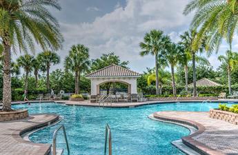 une piscine de rêve au coeur des palmiers