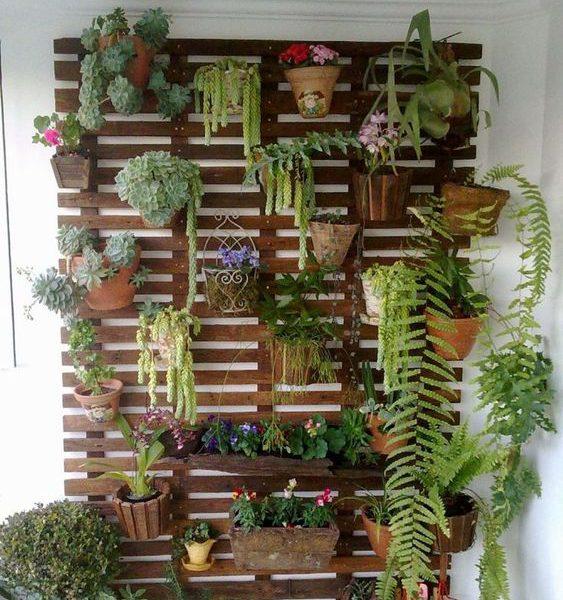 nos astuces d co pour fleurir un mur blog ma maison mon jardin. Black Bedroom Furniture Sets. Home Design Ideas