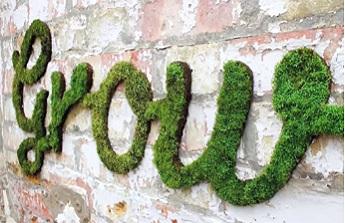 Mousse sur vos murs pour une déco insolite et étonnante : motifs et graffitis au rendez-vous !