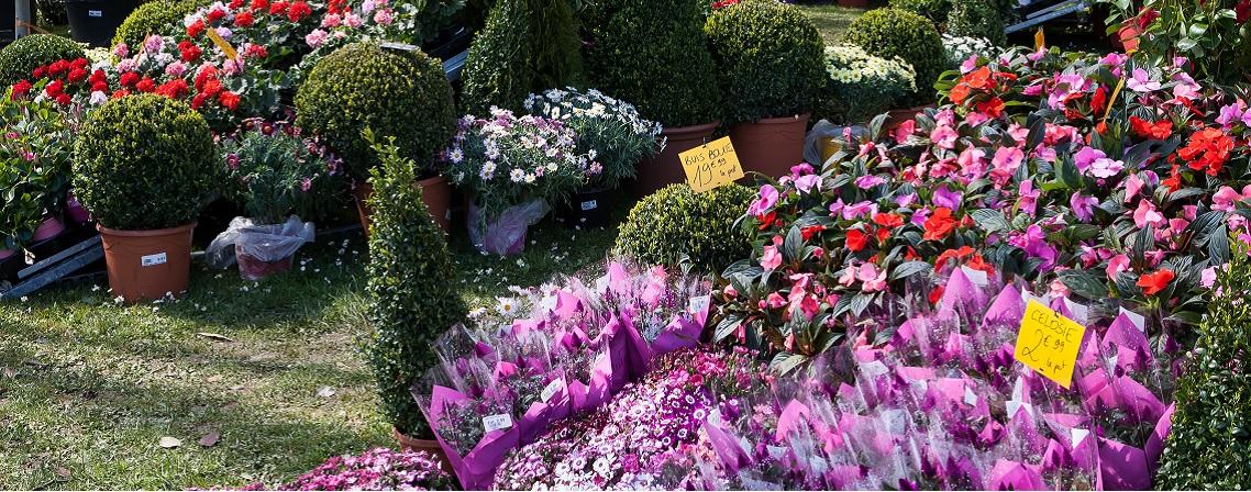 Le salon Jardins en Seine, pour booster sa saison au jardin !