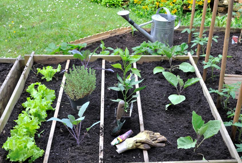 Choisir son abri de jardin pour bien entretenir son - Cabanon de jardin pvc ...